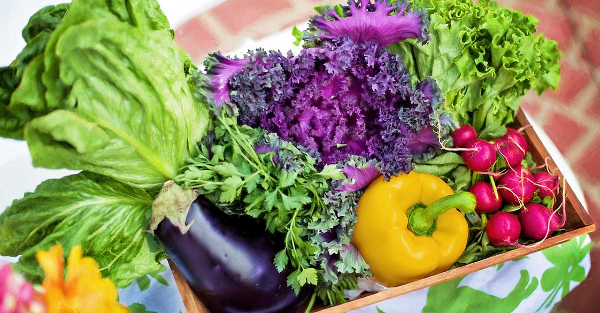growing vegetables in fall