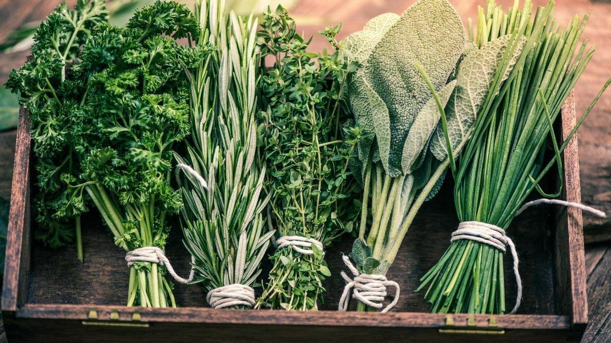 foods that can affect your sleep https://organicgardeningeek.com