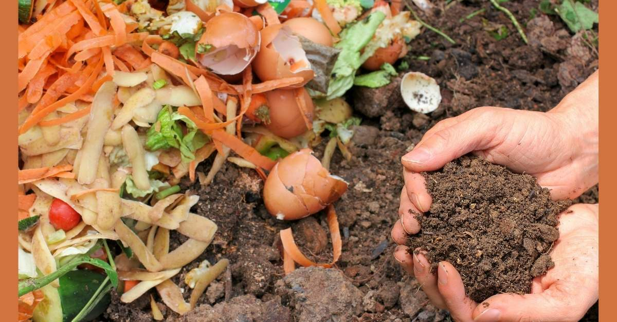 Adsiz Kopyasi 2 - All about sustainable and organic gardening tips and tricks. 2021 - Composting,beginner guide to composting,how do you start composting,best advice for composting - https://organicgardeningeek.com/beginner-guide-to-start-composting-at-home/