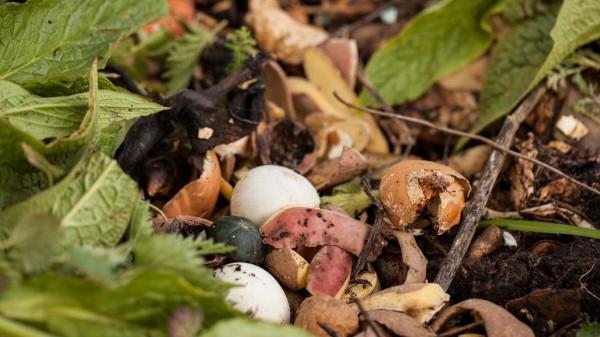 Bokashi composting recipe https://organicgardeningeek.com