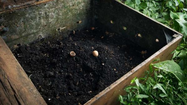 Hw to make cotton burr composting at home https://organicgardeningeek.com