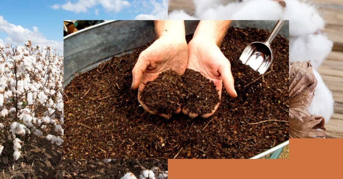 cotton burr composting at home - All about sustainable and organic gardening tips and tricks. 2021 - Composting,beginner guide to composting,how do you start composting,best advice for composting - https://organicgardeningeek.com/beginner-guide-to-start-composting-at-home/