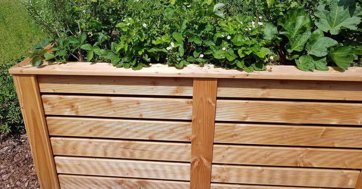 The Ultimate Guide For Building A Raised Waist High Garden Bed https://organicgardeningeek.com