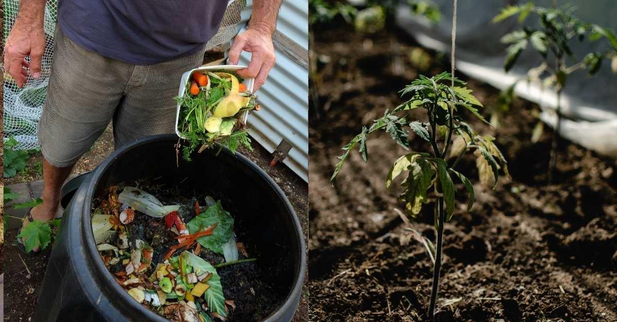 Beginner guide to composting from scratch https://organicgardeningeek.com