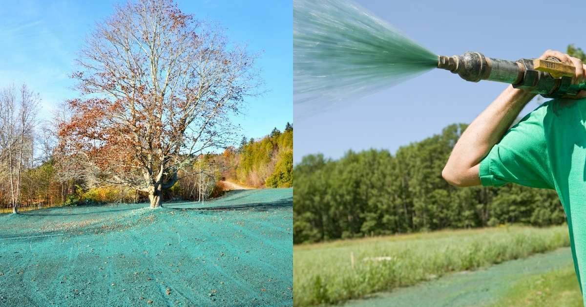 What is hydroseeding and why do you need it? https://organicgardeningeek.com