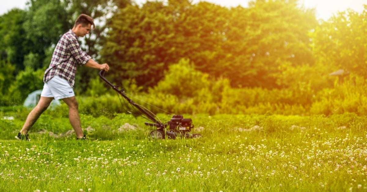 Yard etiquette - what you need to know to be a good neighbour https://organicgardeningeek.com
