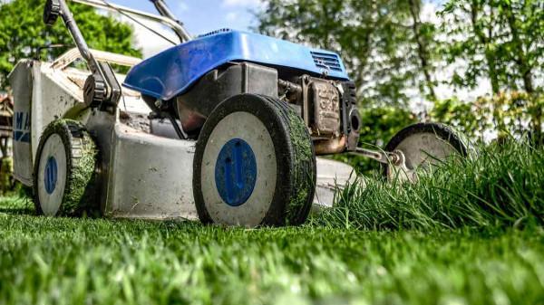 Natural lawn care https://organicgardeningeek.com