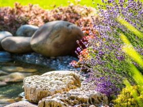 Miami landscaping services to hire - What you ned to know before chosing a company https://organicgardeningeek.com