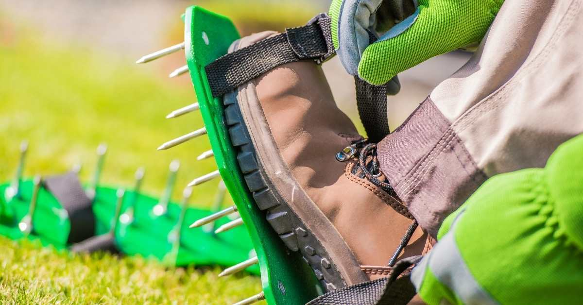 When Does Your Yard Need Lawn Aeration? when to aerate lawns in my garden? https://organicgardeningeek.com
