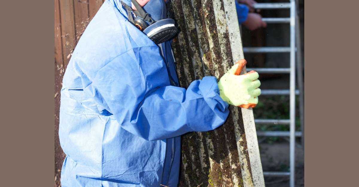 Why should one hire a professional for Asbestos Removal? https://organicgardeningeek.com