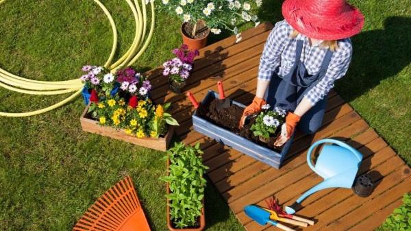 Nuisance gardener https://organicgardeningeek.com