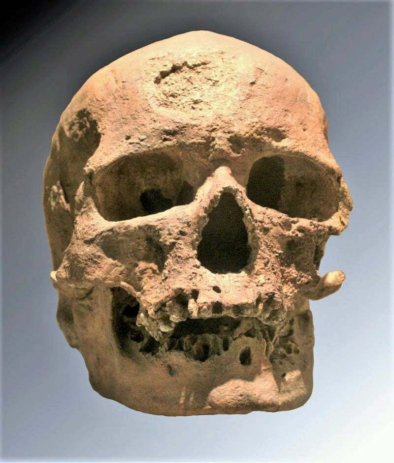 Scientists Have Shown What the Face of a Man Looked Like Who Lived 28 Thousand Years Ago