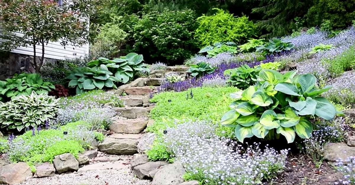 Rockery garden design https://organicgardeningeek.com