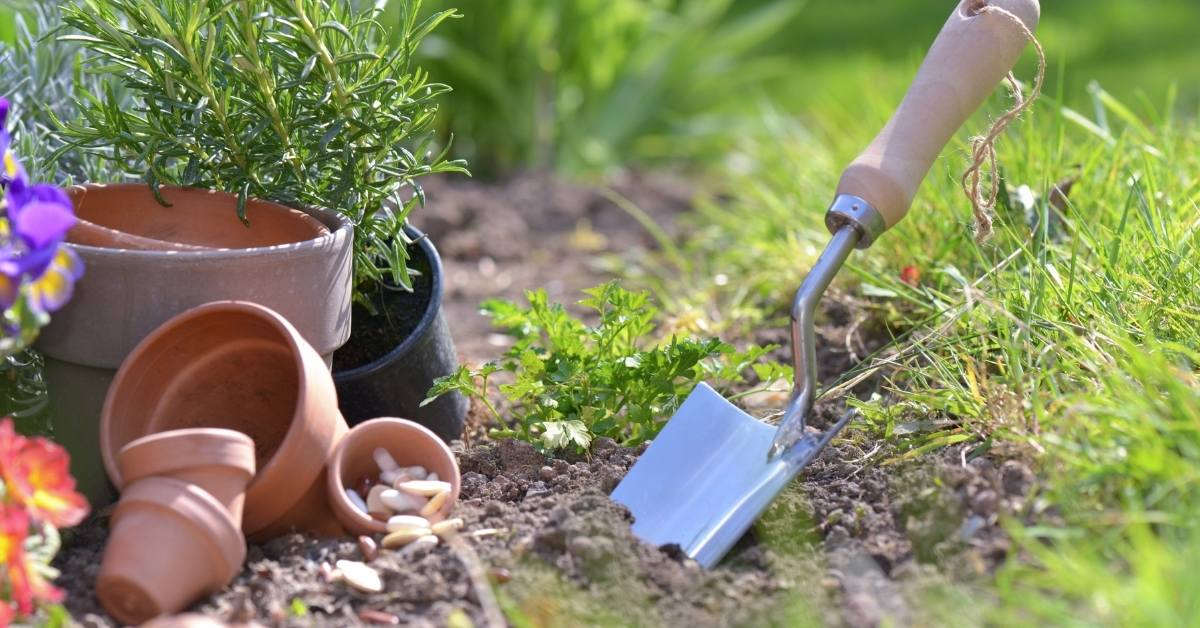 Must have indoor gardening supplies https://organicgardeningeek.com